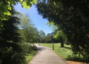 Walk to town through Museum Gardens